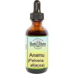 Anamu|Tinctures-Liquid Herbal Extracts & Benefits