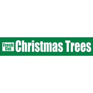 Fresh Cut Christmas Trees_MAIN