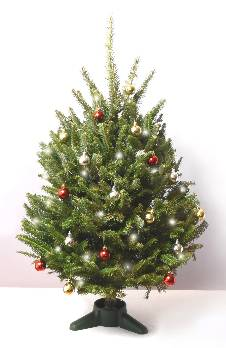 Fraser Fir Decorated Table Top Christmas Tree with Lights