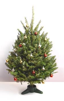 Fraser Fir Decorated Table Top Christmas Tree