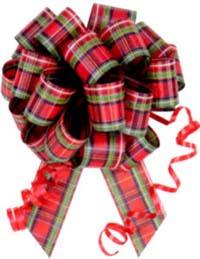 #9 Plaid Pull Bow