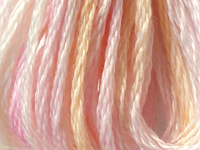 DMC Color Variations Embroidery Floss – 4170_THUMBNAIL