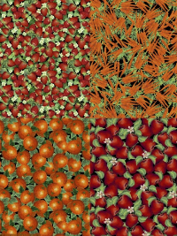 "Windham ""Locally Grown"" #41353-X - Apples, Carrots, Strawberries & Oranges Panel - PRICED PER PANEL"