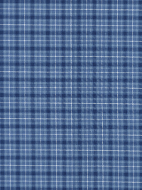 "Marcus Fabrics ""Cottage View"" # R15-6403-0150 - Blue and White Plaid"