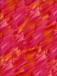 "Kanvas Studio ""Patio Splash"" # 08561-20 – Bright Brush Strokes"