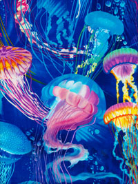 Timeless Treasures - Style: Michael-C1826 Color: Blue - Blue with Bright Multicolored Jellyfish