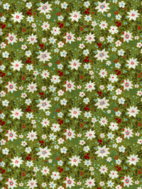 "Moda ""Juniper Berry - Basic Grey"" #30432-14 - White Flowers on Green"