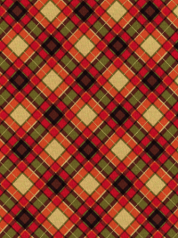 "Timeless Treasures ""Harvest"" # 4277 - Harvest Plaid"