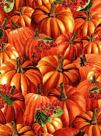 "Timeless Treasures ""Harvest"" # 4293 – Pumpkins"