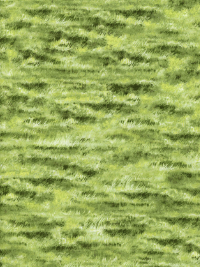 "Northcott ""Naturescapes"" #21414-74 Green - Grass"