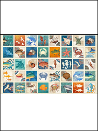"Quilting Treasures ""Ocean Oasis"" # 1649-25829-X – Ocean Oasis Blocks - PRICED PER PANEL"