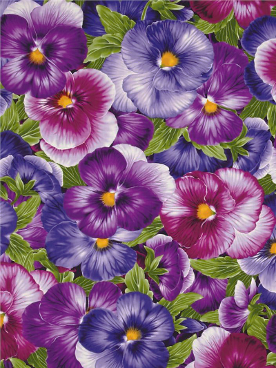 "Timeless Treasures ""Viola"" # C-4457 Purple - Large Pansies"