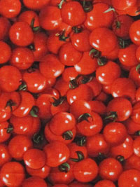 RJR Farmers Market #0180-1 - Cherry Tomatoes
