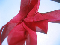 "Hanah Hand-dyed Silk Ribbon, 7/16"" — American Beauty"