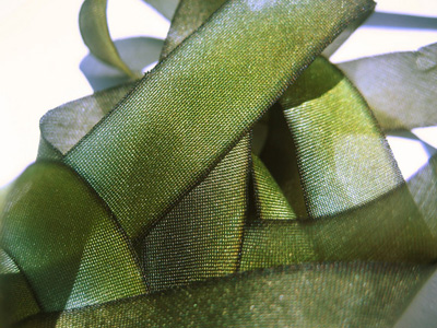 "Hanah Hand-dyed Silk Ribbon, 5/8"" — Mossy Rock"