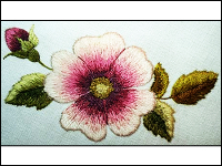 Thread Painted Wild Rose