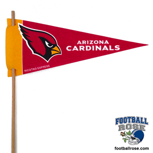 Arizona Cardinals Mini Felt Pennants