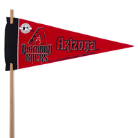 Arizona Diamondbacks Mini Felt Pennants