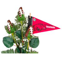 Arkansas Razorbacks Gifts and Accessories