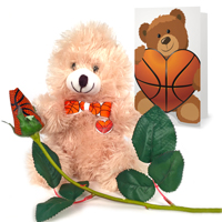 Basketball rose teddy bear gift set