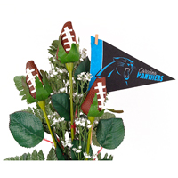 Carolina Panthers Football Rose 3 Stem Arrangement - Football gift for home or office