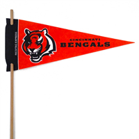 Cincinnati Bengals Mini Felt Pennants