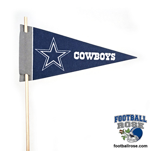 Dallas Cowboys Mini Felt Pennants