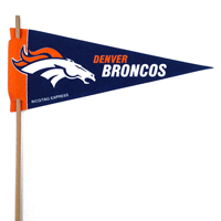 Denver Broncos Mini Felt Pennants