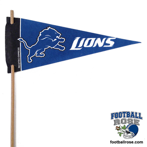 Detroit Lions Mini Felt Pennants