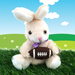 Football Rose & Bunny Gift Set Mini-Thumbnail