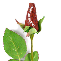 Football Rose Long Stem - Football themed gifts