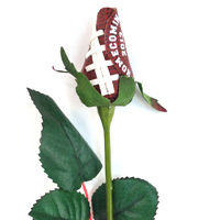 Homecoming 2017 Football Rose