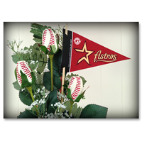 Baseball Gifts|Houston Astros Flower Arrangements and Gifts