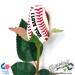I Love You Baseball Rose Mini-Thumbnail