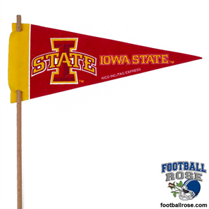 Iowa State Cyclones Mini Felt Pennants