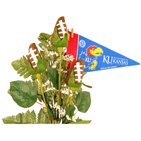 Kansas Jayhawks Gifts and Accessories