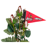 Louisville Cardinals Gifts and Accessories