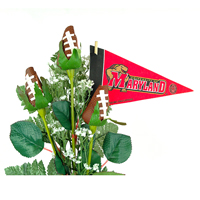 Maryland Terrapins Gifts and Accessories