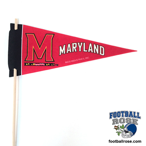 Maryland Terrapins Mini Felt Pennants