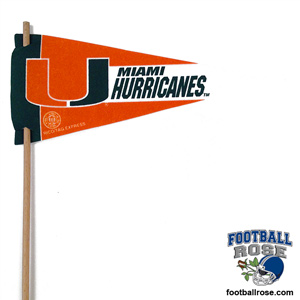 Miami Hurricanes Mini Felt Pennants