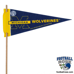 Michigan Wolverines Mini Felt Pennants