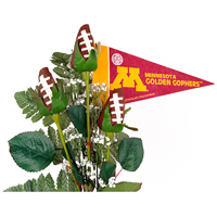 Minnesota Gophers Gifts and Accessories