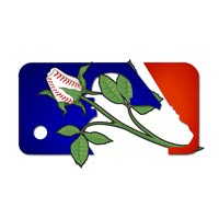 MLB Baseball Gifts Flower Rose Arrangements