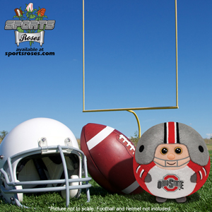 Ohio State Buckeyes Beanie Ballz Plush Toy