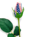 Star-Spangled Baseball Rose Mini-Thumbnail