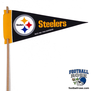 Pittsburgh Steelers Mini Felt Pennants