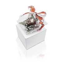 Football Rose Boutonniere Gift Arrangement