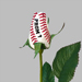 Prom Baseball Rose Mini-Thumbnail