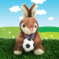 Baseball Basketball Football Soccer Bunny