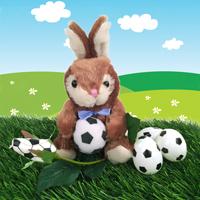 Soccer rose Bunny gift set